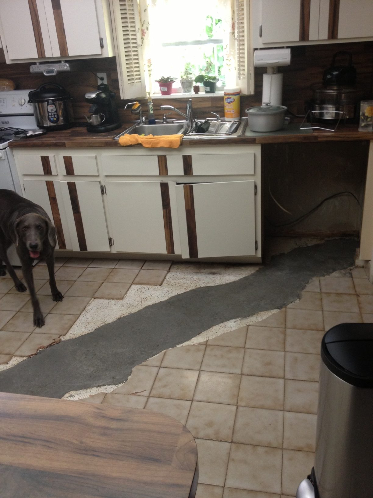 drain line damage grove claim adjusters